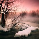 Pink Dreams by Päivi  Valkonen