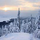 Sunrise in Koli by Päivi  Valkonen