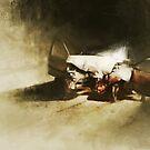 Wreck by mattiassnygg