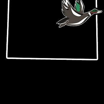 Teal Hunting Colorado Duck Hunting Waterfowl by shoppzee