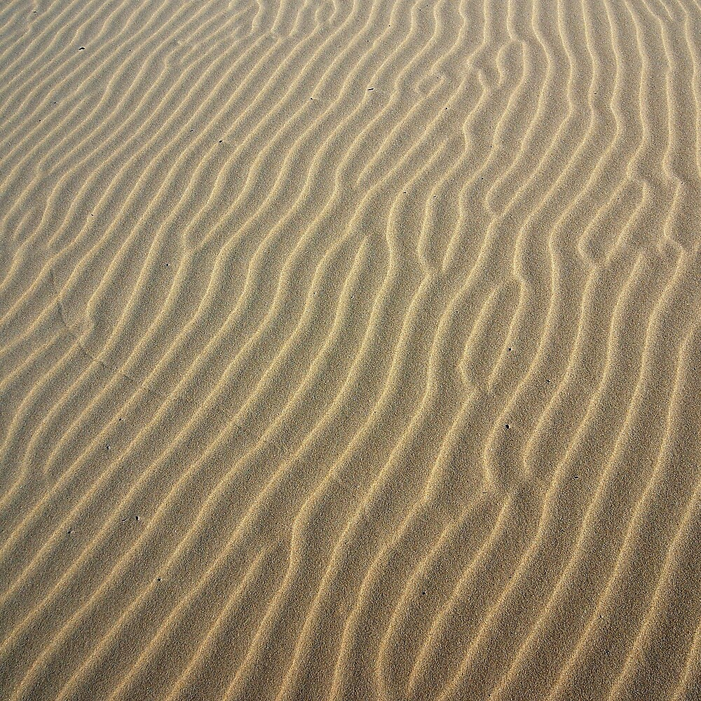 Sand in St Helens, Tasmania by groophics