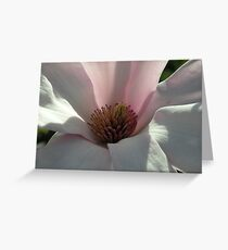 Transparency Greeting Card