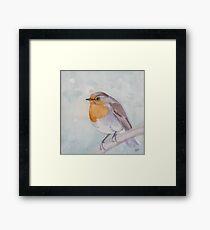 Old World Robin Framed Print