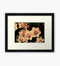 pout Framed Print