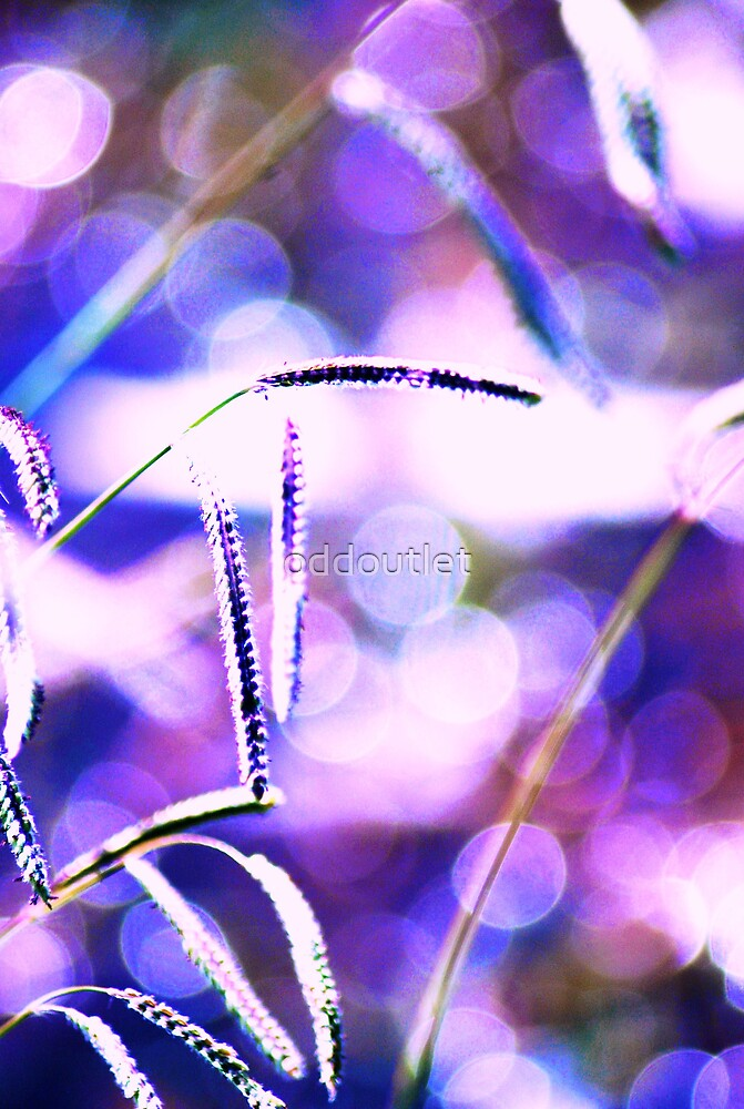 Purple Weedy Things by oddoutlet