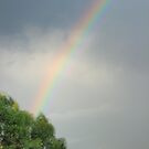 Rainbow by Rosalie M