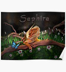 Saphira! Poster
