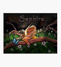 Saphira! Photographic Print
