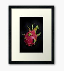 Hylocereus undatus Framed Print