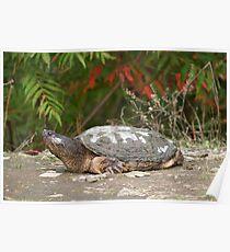 Gigantasaurus Poster