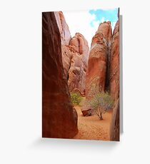 A courtyard in Arches National Park. Greeting Card