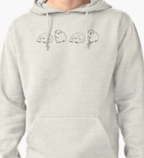 Guinea Pigs On Parade Pullover Hoodie