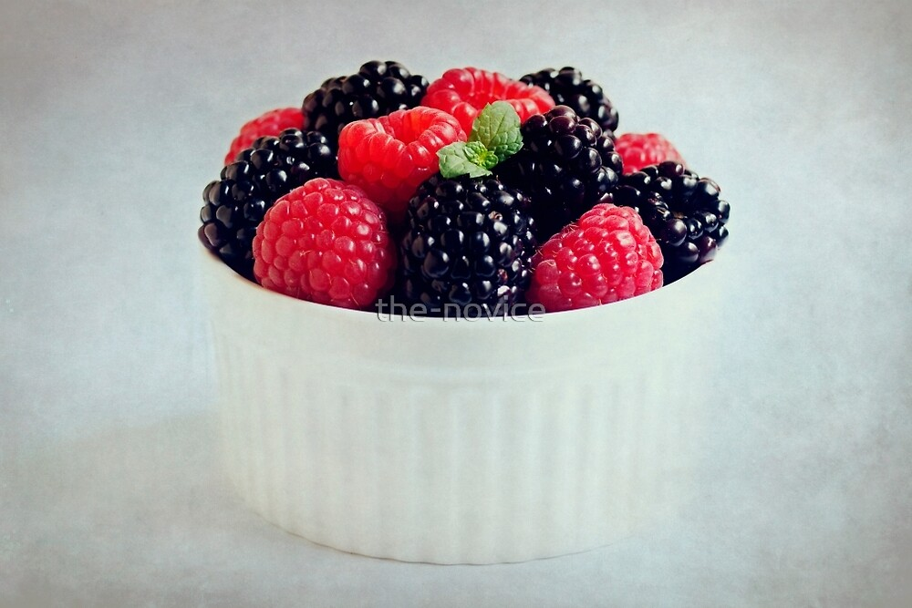 Berries and Brambles by the-novice