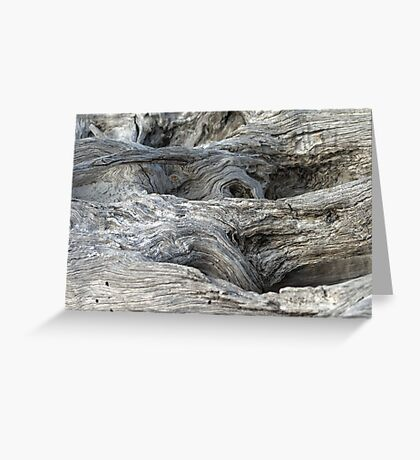 Driftwood Art Greeting Card
