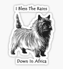 Religious dog in the rain, a little dog too Sticker