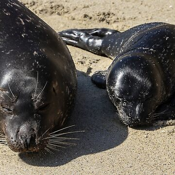 Sleeping Close to Mama by heatherfriedman