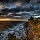 A New Day - Avalon, NSW, Australia by Leigh Nelson