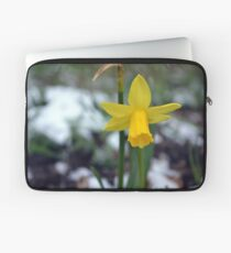 Daffodil in the Snow Laptop Sleeve