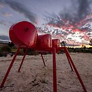 Oversize Ant by John Davies