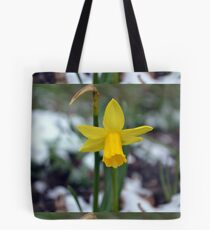 Daffodil in the Snow Tote Bag