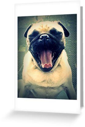 Yawn by Katie Weychardt