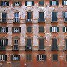 So many windows by lukasdf