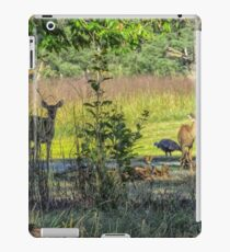 Mixed Species  iPad Case/Skin