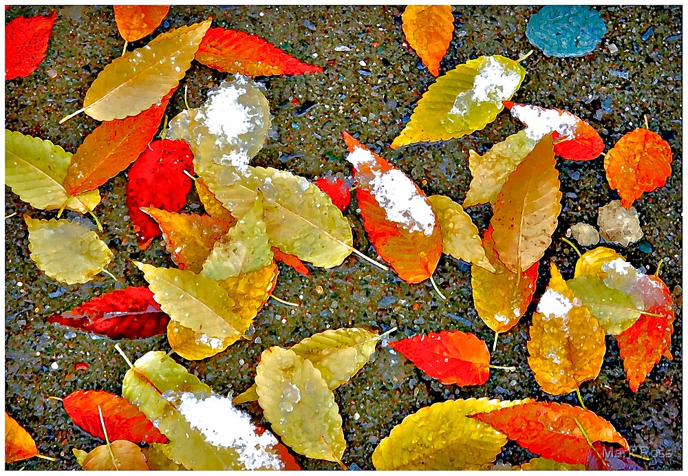 First Frost #1 by Mark Ross