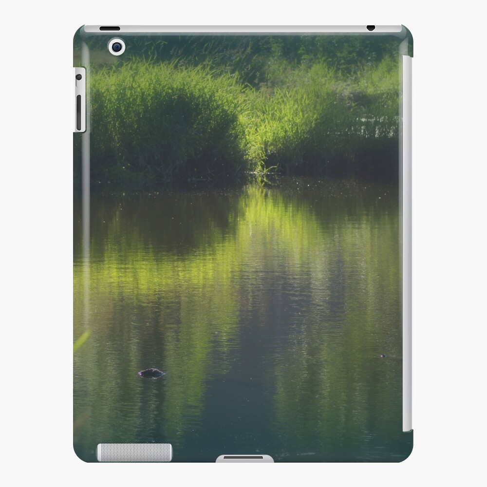 turtle swimming away at Trojan pond, near Goble, Oregon iPad Case & Skin