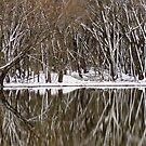 Winter/Spring Pond Reflections  by lorilee