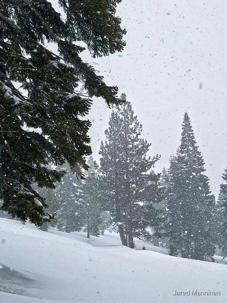 Snowstorm and Forest by JaredManninen