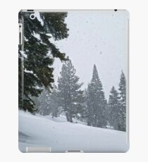 Snowstorm and Forest iPad Case/Skin