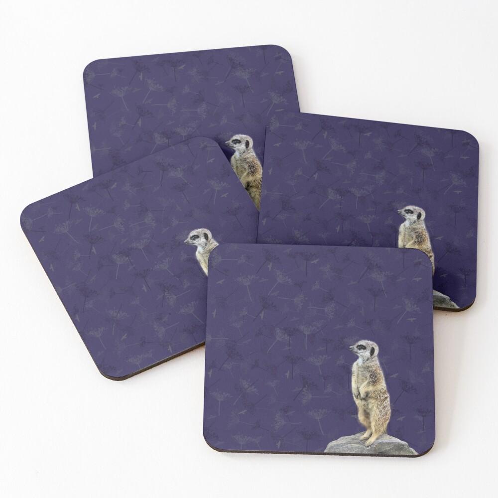 Meerkat  Coasters (Set of 4)