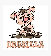 Drusilla Piggy Photographic Print