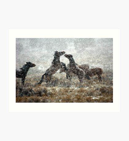 Storm Fight Art Print