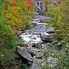 The Rocky River by CindyG