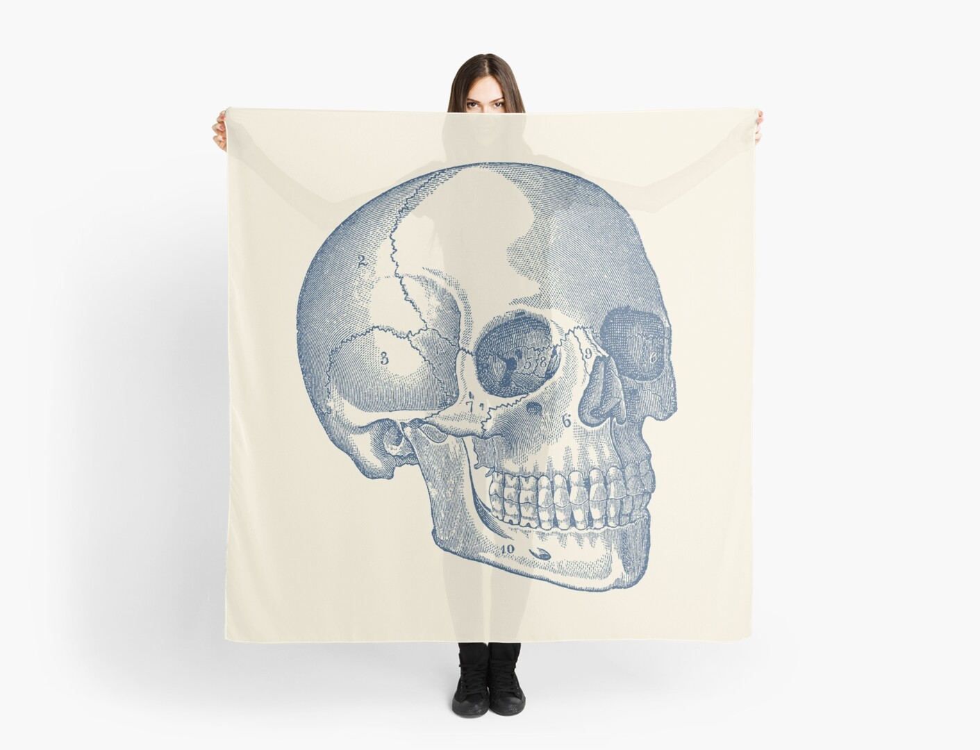 Human Skull Diagram Vintage Anatomy Scarves By Vaposters Redbubble