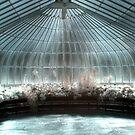 Glass House by Roddy Atkinson