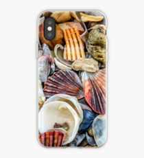 Sea Shells by the Sea shore iPhone Case