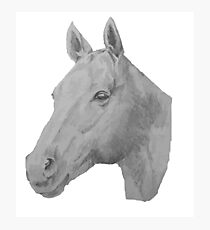 Horse drawing Photographic Print