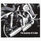 Anatomy Of A Ride by Sharon Elliott-Thomas