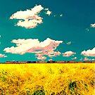 Prairie Train by Alexandre Thorne