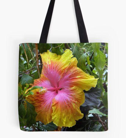 Rainbow Hibiscus Tote Bag