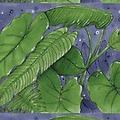 Tropical Foliage 1 by shellysea