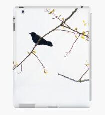 Perching Crow iPad Case/Skin