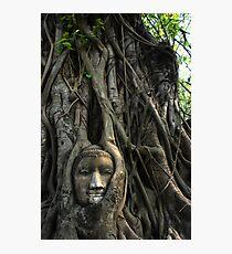 Thailand Photographic Print