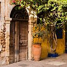 Old Entrance in Chania by Rae Tucker