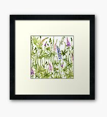 Watercolor lupin Framed Print