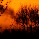 The fire that burns by solareclips~Julie  Alexander