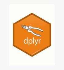 dplyr Hex Logo Art Print